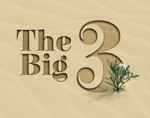 The Big Three: Engaging Miracles of Life Change