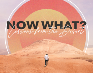 Now What – Lessons from the Desert